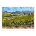 Napa Valley California Postcard