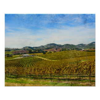 Napa Valley California Vineyard Poster