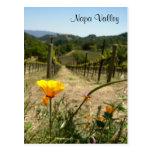 Napa Valley Spring
