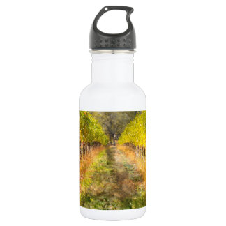 Napa Valley Vineyard in Fall 532 Ml Water Bottle
