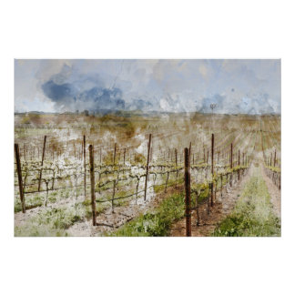 Napa Valley Vineyard Poster