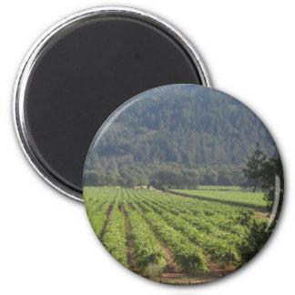 Napa Valley Vineyards I 6 Cm Round Magnet