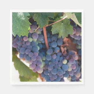 Napkins / Paper - Grapes on the Vine Paper Serviettes