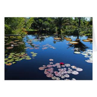 Naples Botanical Garden Water Lilies Card