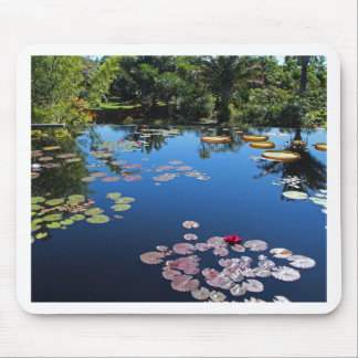 Naples Botanical Garden Water Lilies Mouse Pad