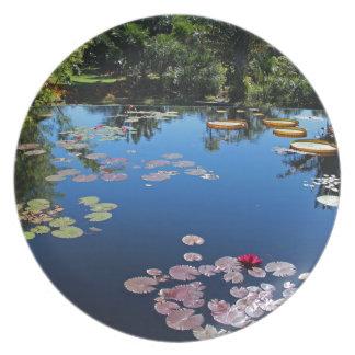 Naples Botanical Garden Water Lilies Plate