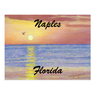 """NAPLES,FLORIDA SUNSET POSTCARD"" POSTCARD"