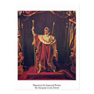 Napoleon In Imperial Robes By Jacques-Louis David Postcard