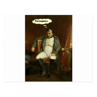 Napoleon Thinks About Porcupines Postcard