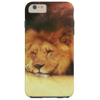 Napping King Of The Jungle Lion Wild Animal Photo Tough iPhone 6 Plus Case