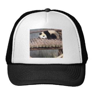 Napping Panda Hats