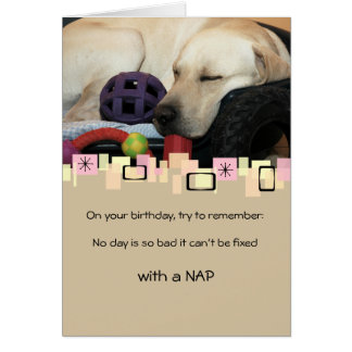 Napping Yellow Labrador Retriever All Occasion Card