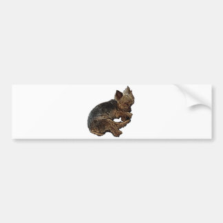 Napping Yorkie Bumper Sticker