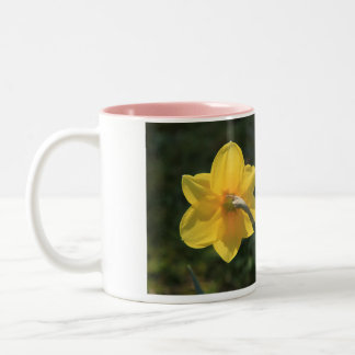 Narcissus by Thespringgarden Two-Tone Coffee Mug