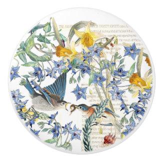 Narcissus Flowers Bluebird Birds Knob