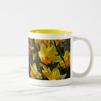 Narcissuses Two-Tone Coffee Mug