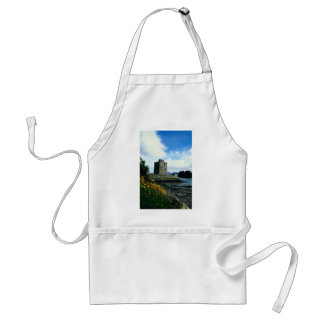 Narrow water castle, County Down, Ireland in Europ Aprons