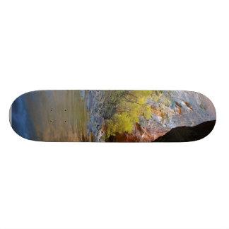 Narrows In Zion National Park Skate Decks