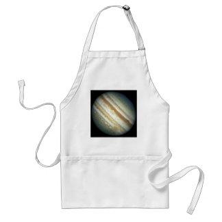 NASA - A Jupiter Storm Adult Apron