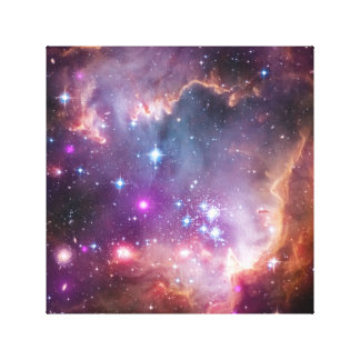 NASA Observatories' Image Magellanic Cloud Galaxy Canvas Print