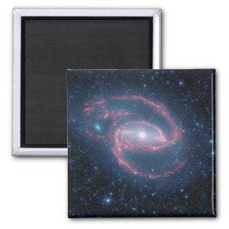 NASAs Coiled Creature of the Night Fridge Magnet