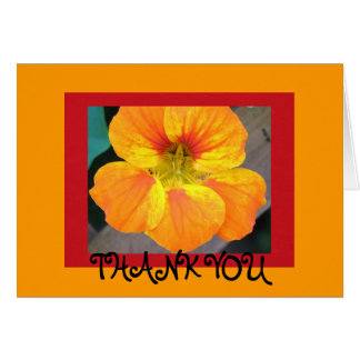 Nasturtium  - Thank you Card