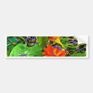 Nasturtiums Garden Gifts by Sharles Art. Bumper Sticker