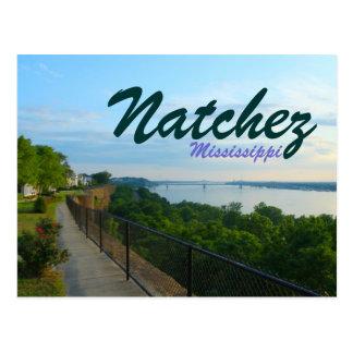 Natchez Mississippi River Bluffs Great Flood 2011 Postcard