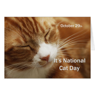 National Cat Day October 29 Card