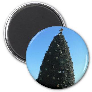 National Christmas Tree Magnet