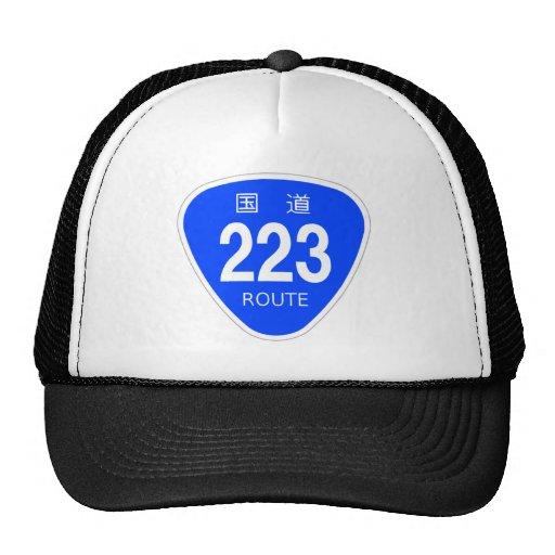National highway 223 line - national highway sign trucker hat