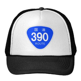 National highway 390 line - national highway sign hat