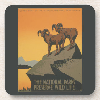 National Parks Preserve Vintage Ad. Beverage Coaster