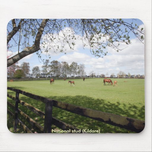 National Stud Mouse Mat