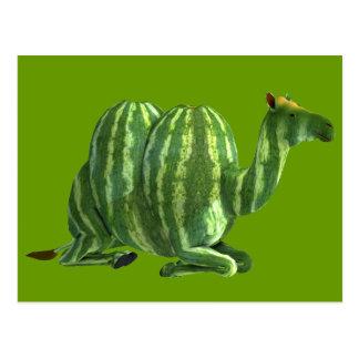 National Watermelon Day Dromedary Postcard