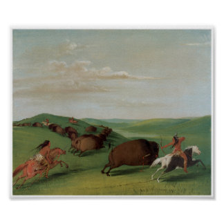 Native American Indians Buffalo Chase1832 Poster