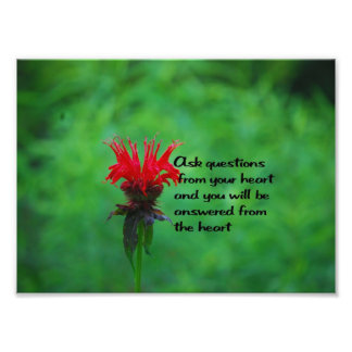 Native American Proverb Photographic Print