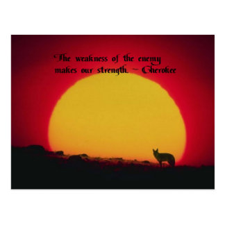 Native American Quotes Postcard