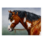 Native American War Horse Pack Of Chubby Business Cards