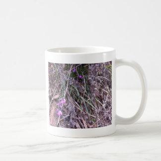 Native Australian wild grasses in flower Mug