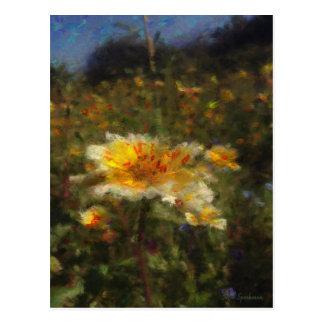 Native Flower Meadow Postcard