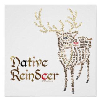 Native Reindeer Poster