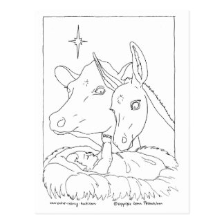 Nativity With Ox and Donkey Postcard