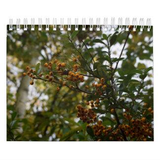 Natural beauty, calender calendars