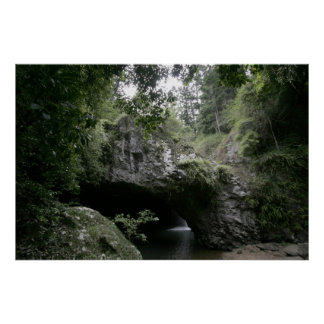 Natural Bridge Poster