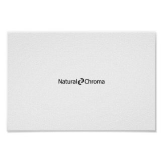 Natural Chroma Poster - Enabling the Henna World