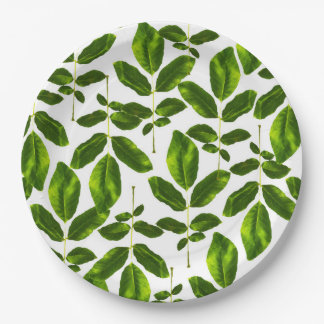 Natural Cure Paper Plate