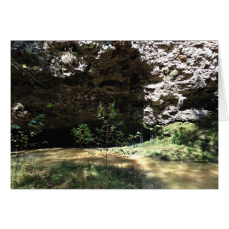 Natural Falls State Park Card