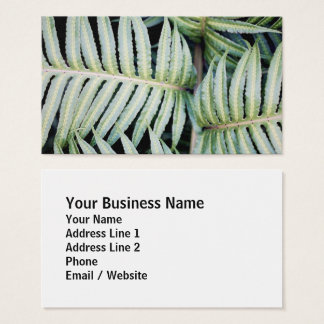 Natural Fern Leaf Photography Business Card