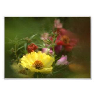 Natural Flower Bouquet Photo Print